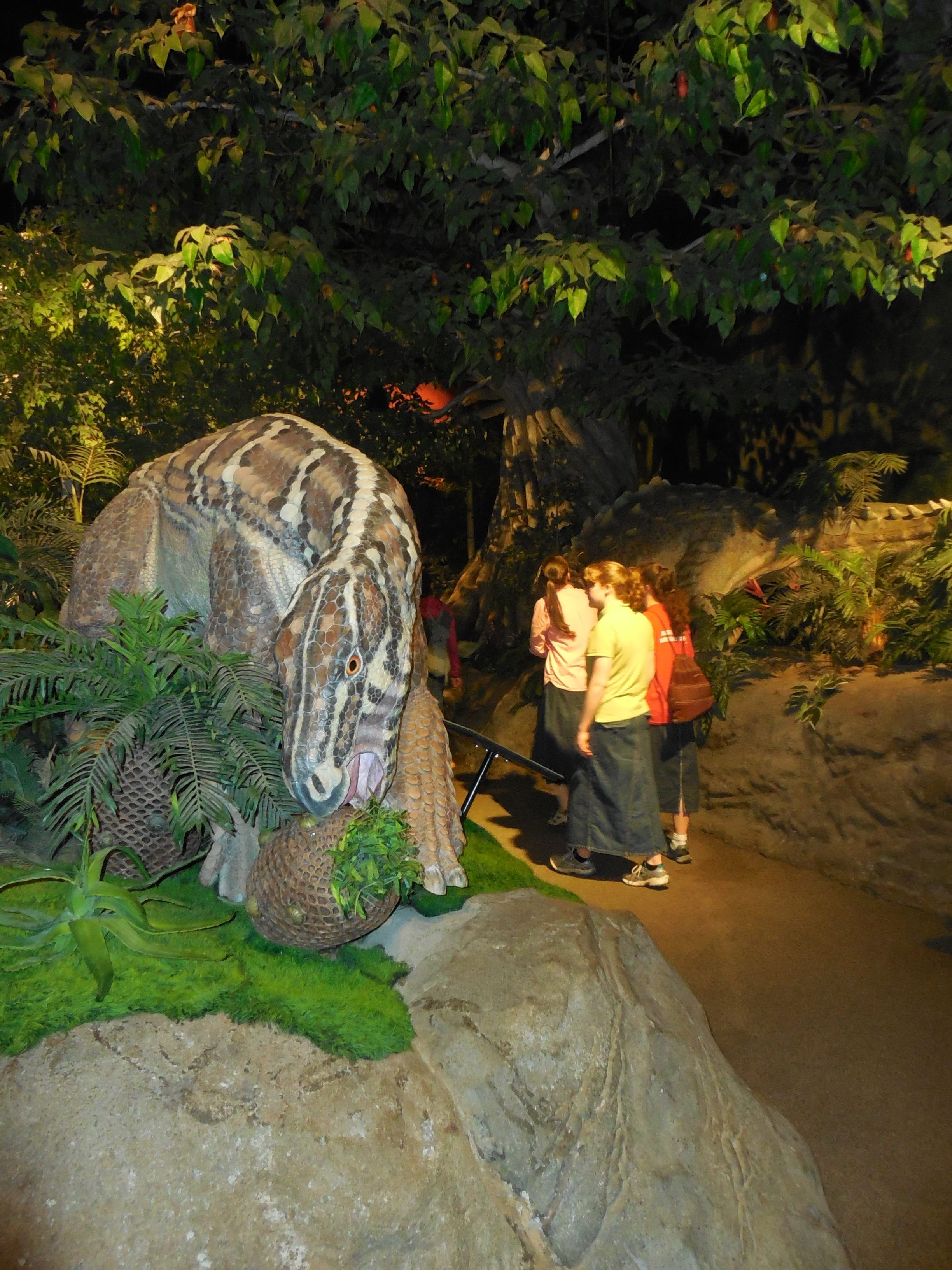 Fairhaven Baptist Church Creation Museum 2016 (96 of 206)